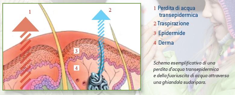 Medicina di psoriasi nonormonale